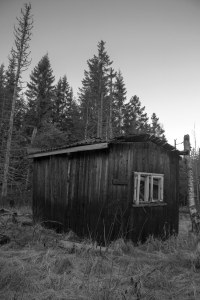 The old cabin