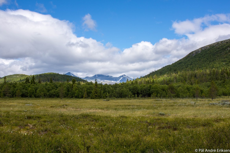 Rondane – summer2017